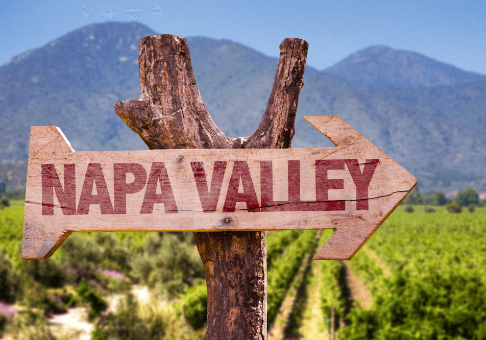 Wander Blog - A plan brewing in your mind to visit Napa Valley? Well, it is apparent what is on your mind - wine, of course!