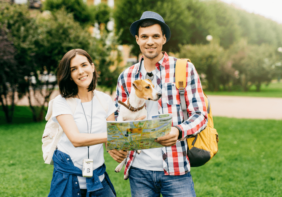 Wander Blog - Want to travel with pets? Here are tips to make life easy for you and your furbaby.